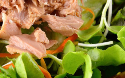 Green salad with tuna